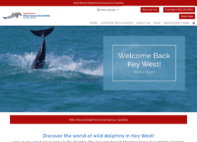 wildaboutdolphins.com