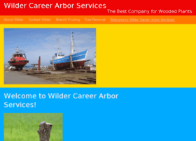 wildercareerservices.com