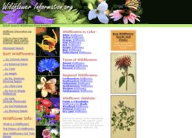 wildflowerinformation.org