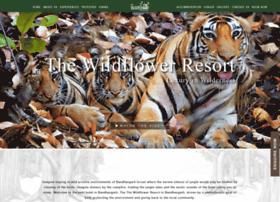 Wildflowerresort.com