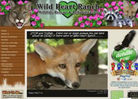 wildheartranch.org