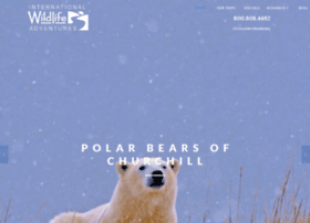 wildlifeadventures.com
