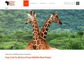 wildnetafrica.com