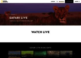 wildsafarilive.com