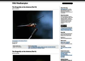 wildwhb.wordpress.com