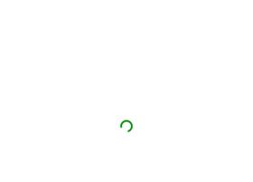 wingztechnologies.com
