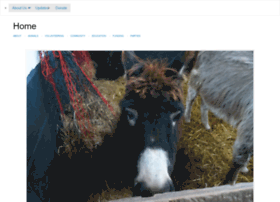 wirraldonkeys.co.uk