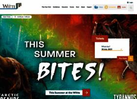 wittemuseum.org