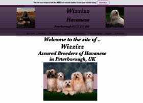 wizzizz.co.uk