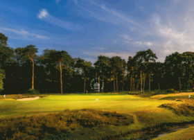 wokinggolfclub.co.uk