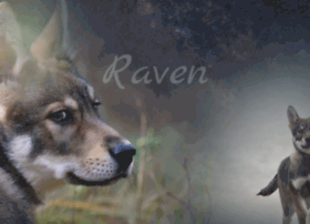 wolfdog-raven.webflow.com