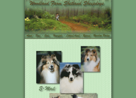 woodlandfarmshelties.com