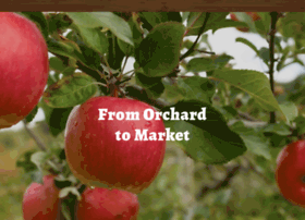 woodorchard.com