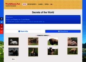 worldstory.net
