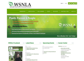 wsnla.site-ym.com