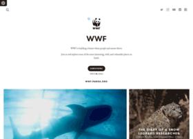 wwf.exposure.co