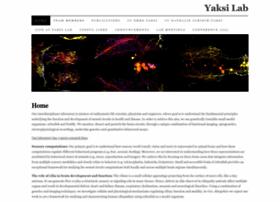 yaksilab.com