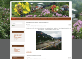 yavuzkoyu.com