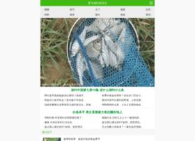 ymxfishing.com