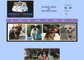 yorkie911rescue.rescuegroups.org