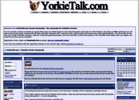 yorkietalk.com