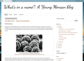 youngmensans.blogspot.ie