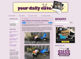 yourdailycute.com
