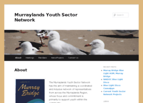 youthsectornetwork.com