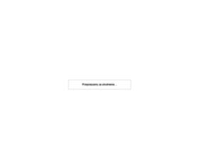 zabawki.wnd.pl