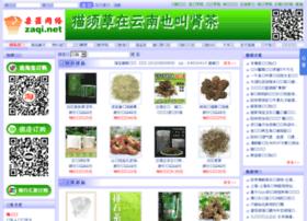 zaqi.net