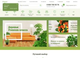 zeltta.ru