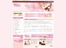 zenshin.pmk-j.net