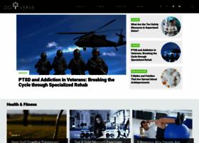 zigverve.com