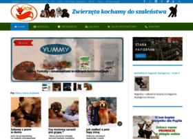 zoologiczny.info