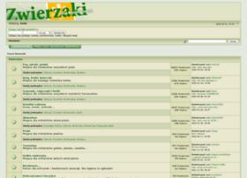 zwierzaki.org