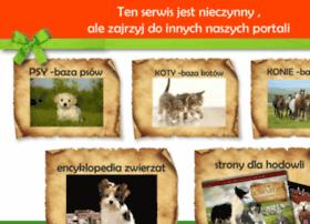 zwierzeta.eurocity.pl